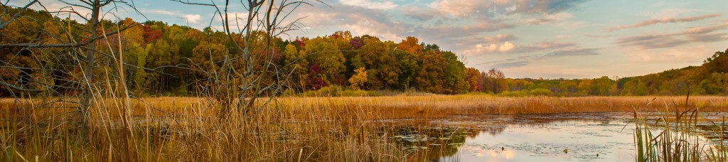 Portage Creek marsh in Al Sabo Land Preserve, Fall colors, Texas Corners, by Jansen Photography